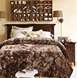 Chanasya Fuzzy Faux Fur Throw Blanket - Light Weight Blanket for Bed Couch and Living Room Suitable for Fall Winter and Spring (Queen) Chocolate