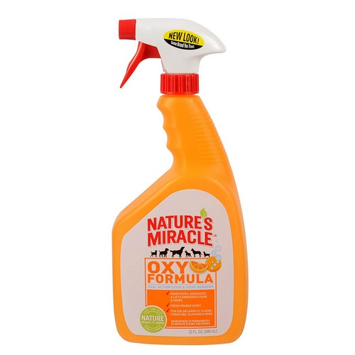 Top 10 Best Pet Odor and Stain Removers in 2019 Reviews