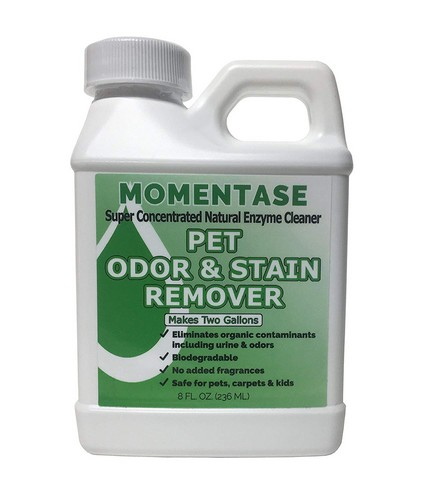 Best Enzyme Cleaners For Cat Urine 10. Momentase Natural Enzyme Concentrated Cleaner High Strength Pet Odor & Stain Remover