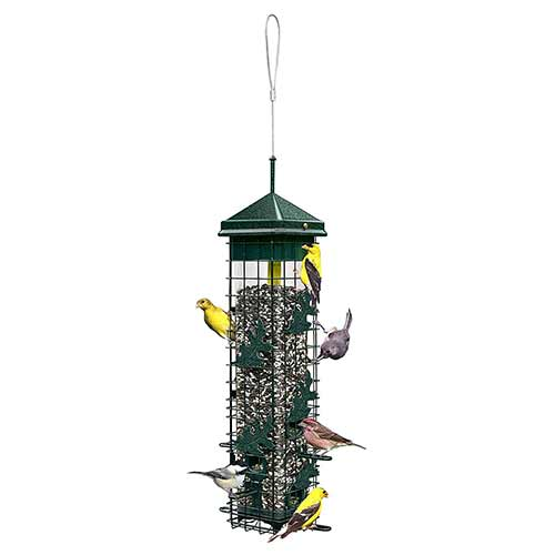 Best Outside Wild Bird Feeders 9. Squirrel solution