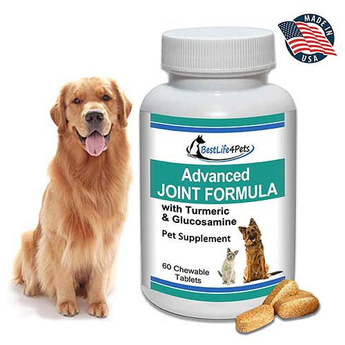 Best Joint Supplements for Dogs with Hip Dysplasia 4. BestLife4Pets Glucosamine and Turmeric Joint Pain Relief Supplement for Dogs
