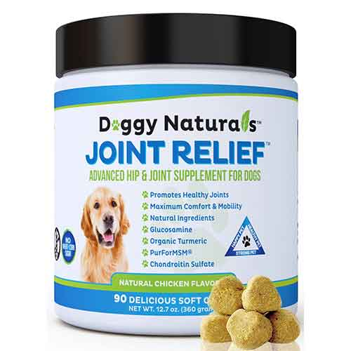Best Joint Supplements for Dogs with Hip Dysplasia 3. Pet Health Pharma Joint Relief | Glucosamine for Dogs All Natural Hip & Joint Supplement for Dogs