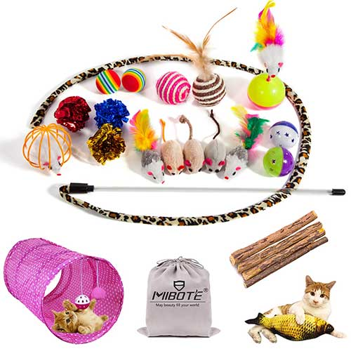 3. MIBOTE 24Pcs Cat Toys Kitten Catnip Toys Assorted, for Puppy Kitty