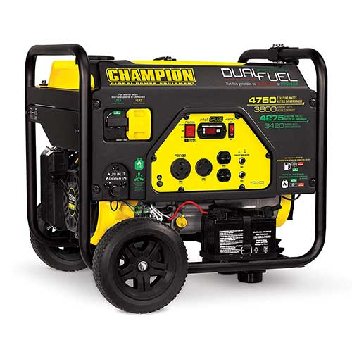 Best Dual Fuel Generators 2. Champion 3800-Watt Dual Fuel RV Ready Portable Generator with Electric Start