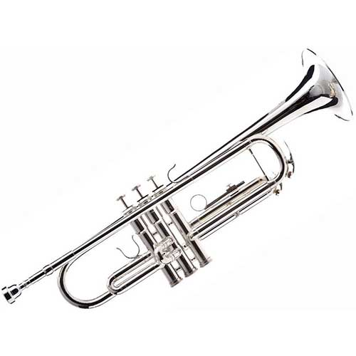 7. Hawk WD-T313 Bb Trumpet with Case and Mouthpiece